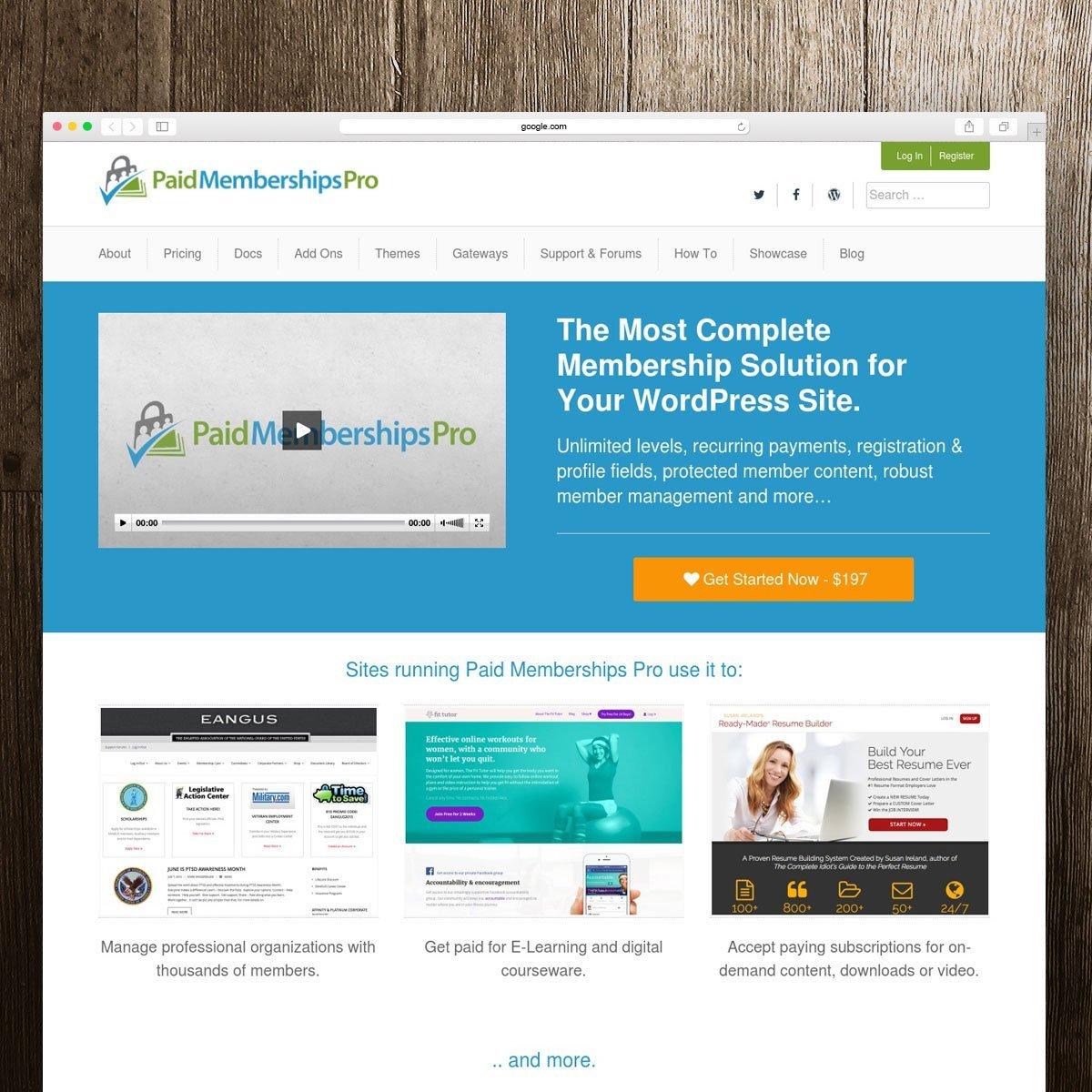 WordPress, Website & Graphic Designer